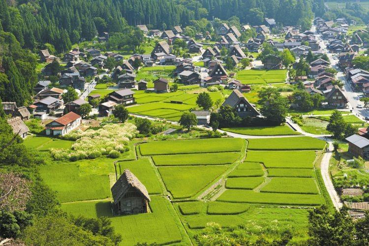 Программа устойчивое развитие сельских территорий